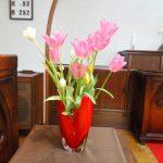 2020年4月26日(日)復活節第3主日 宣教要旨